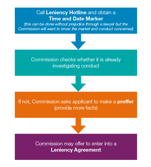 The application process for applying leniency