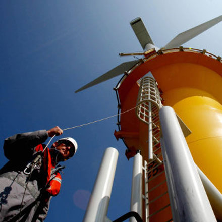 Wind has suffered less than other renewables as it is a mature and cost-efficient industry